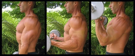 Big Biceps Workouts